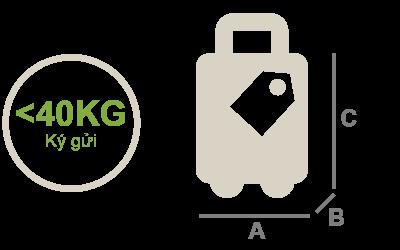 luggage v2-01
